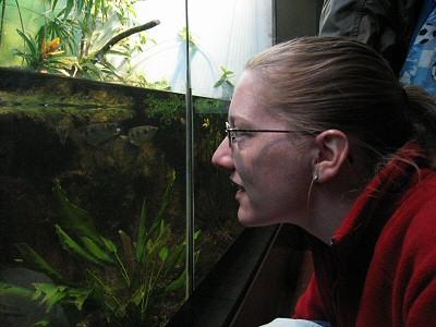rabat til zoologisk have