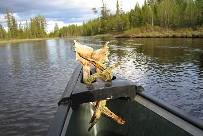 canoeing37.jpg