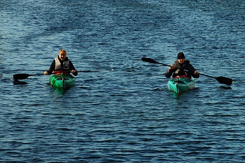 kayaks in Stockholm